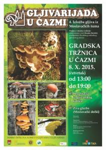 gljive plakat 2015