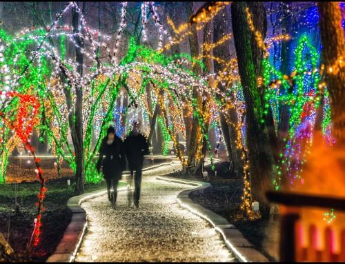 Završila 17. Božićna priča obitelji Salaj